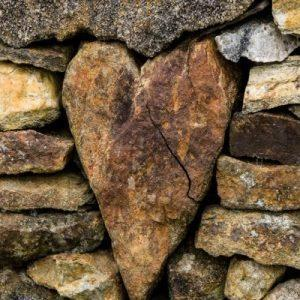 The Wound of Workplace Bullying: Anticipatory Grief and Complicated Grief